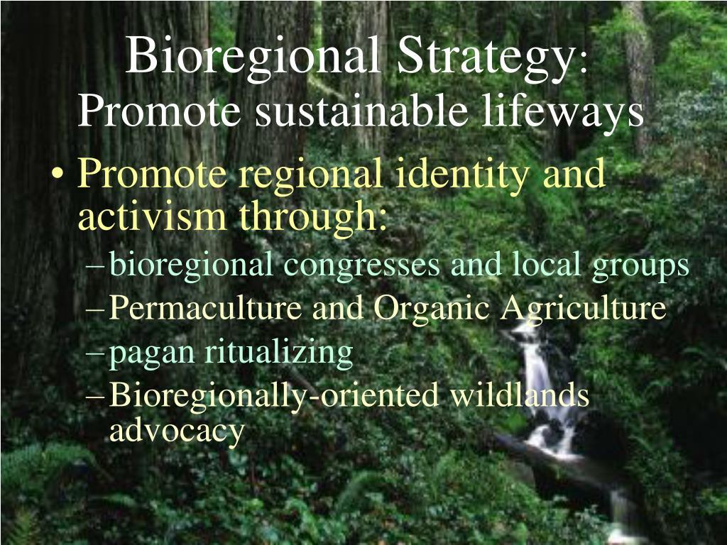 Promote regional identity and activism through: