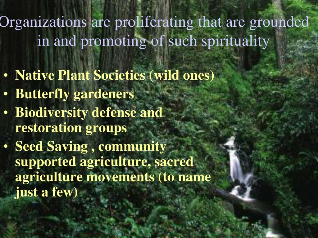 Organizations are proliferating that are grounded in and promoting of such spirituality
