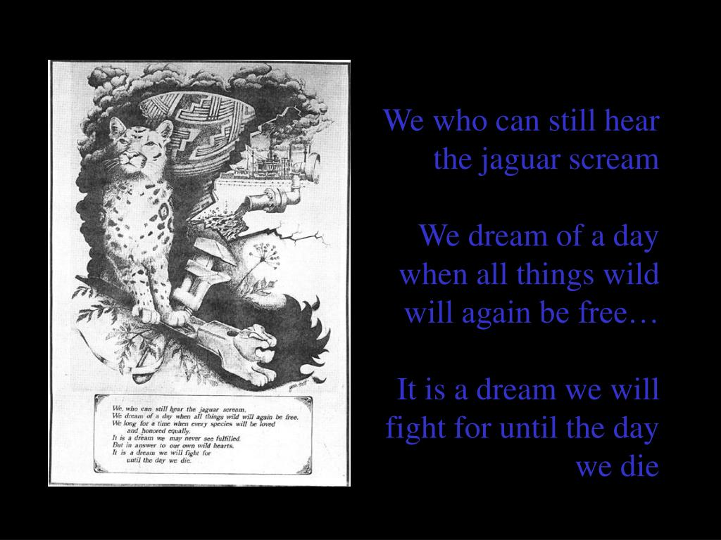 We who can still hear         the jaguar scream