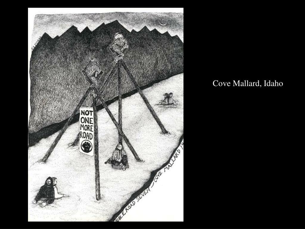 Cove Mallard, Idaho