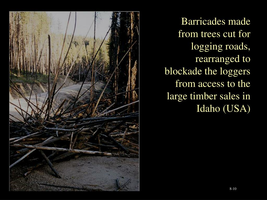 Barricades made from trees cut for logging roads, rearranged to blockade the loggers from access to the large timber sales in Idaho (USA)