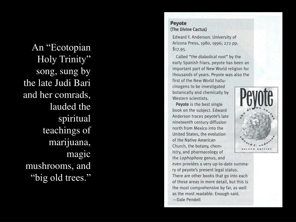 """An """"Ecotopian Holy Trinity"""" song, sung by the late Judi Bari and her comrads, lauded the spiritual teachings of marijuana, magic mushrooms, and """"big old trees."""""""