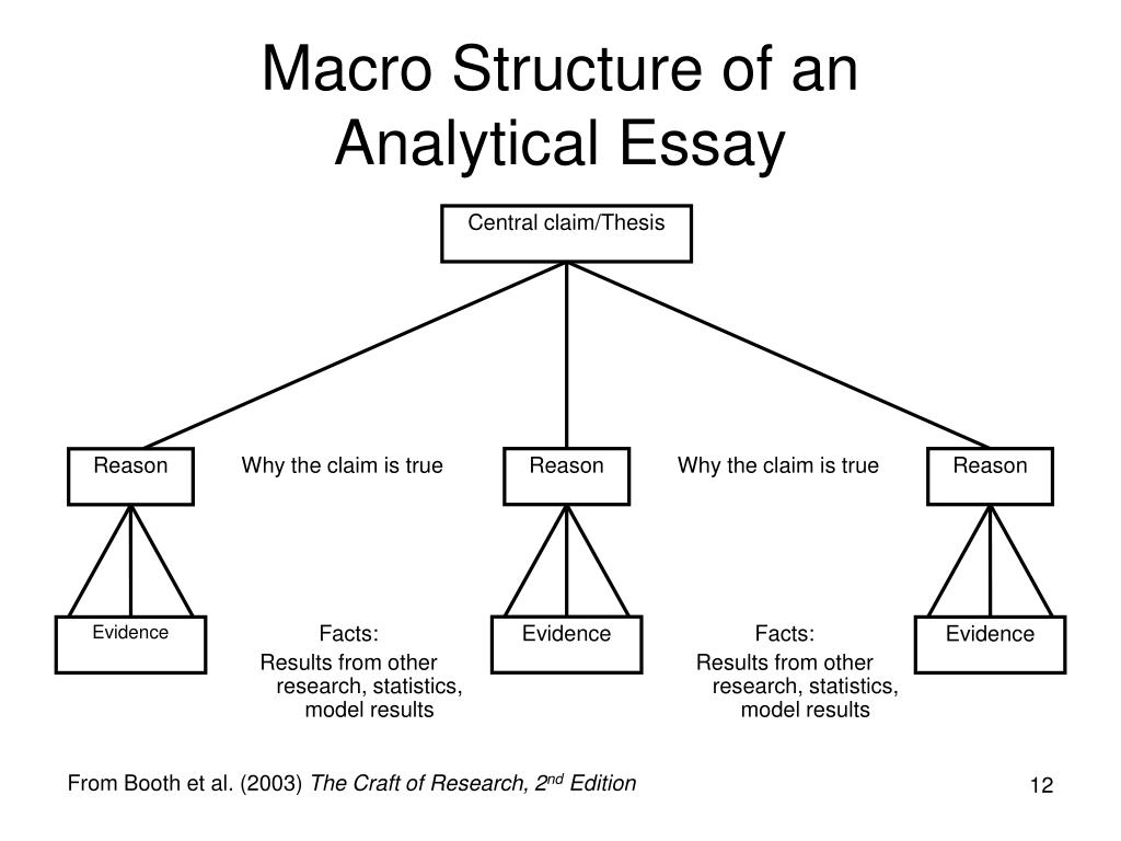 Structure of a thesis essay