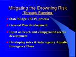 mitigating the drowning risk through planning