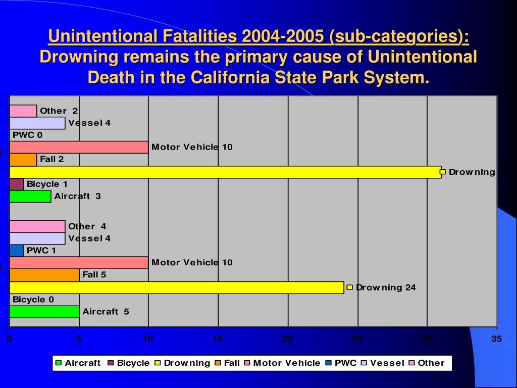Unintentional Fatalities 2004-2005 (sub-categories):