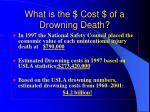 what is the cost of a drowning death