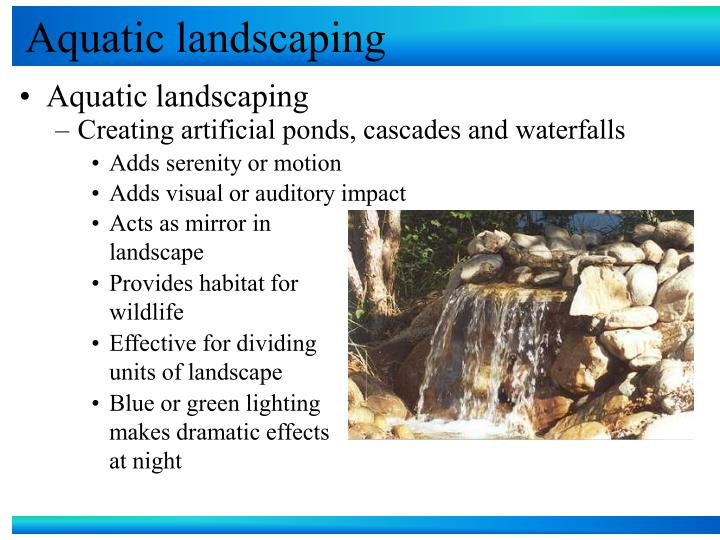 Aquatic landscaping l.jpg
