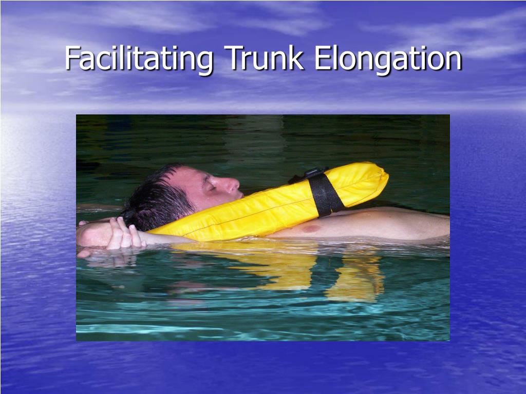 Facilitating Trunk Elongation