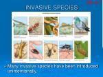 invasive species26