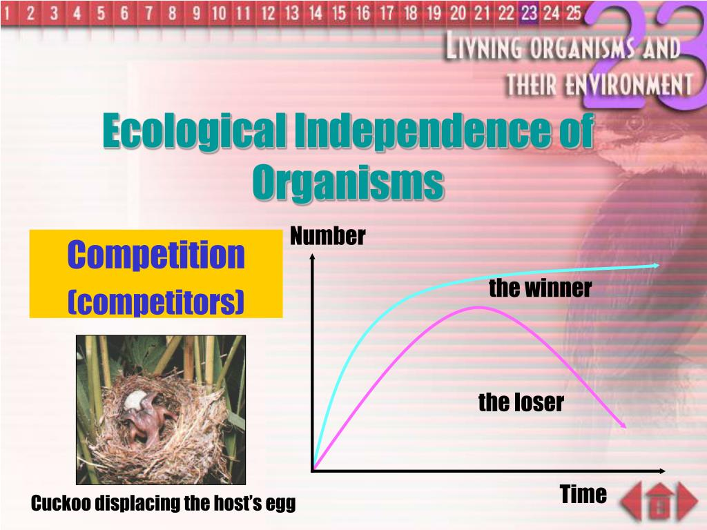 Ecological Independence of Organisms
