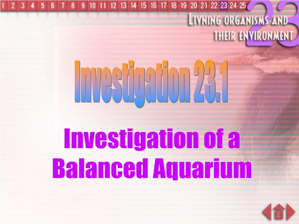 Investigation 23.1
