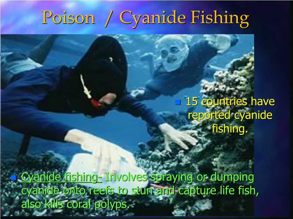 Poison  / Cyanide