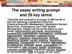 the essay writing prompt and 29 key terms