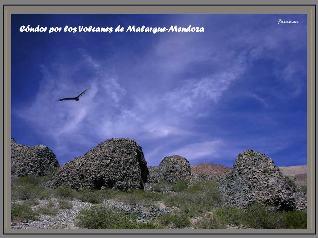 Cóndor por los Volcanes de Malargue-Mendoza