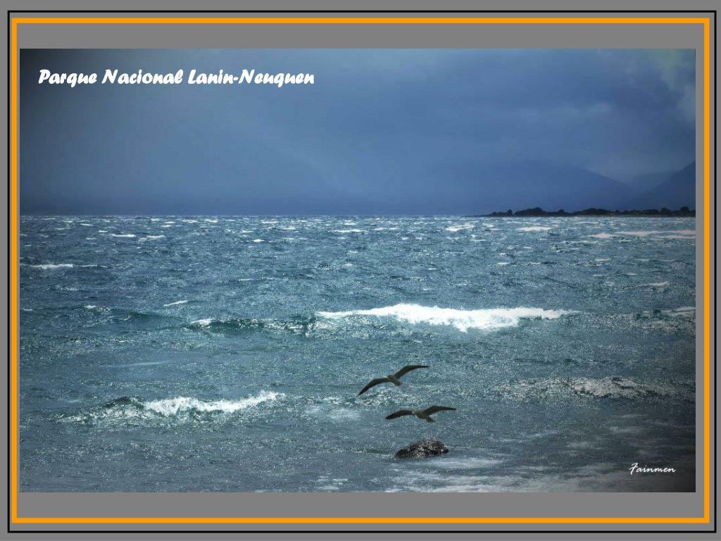 Parque Nacional Lanin-Neuquen