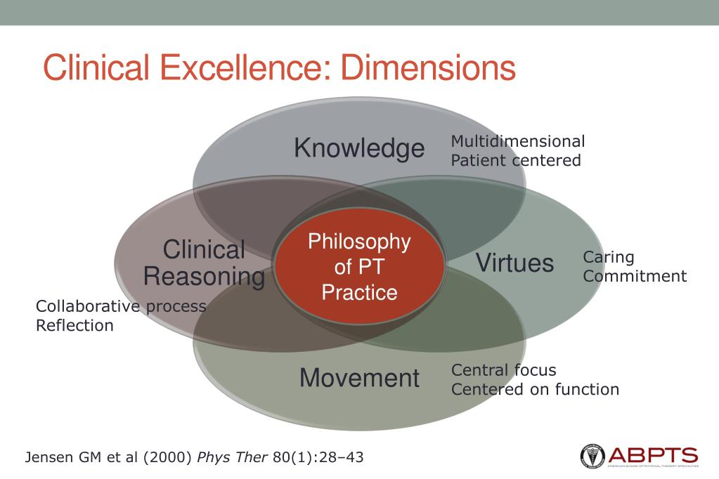 Clinical Excellence: Dimensions