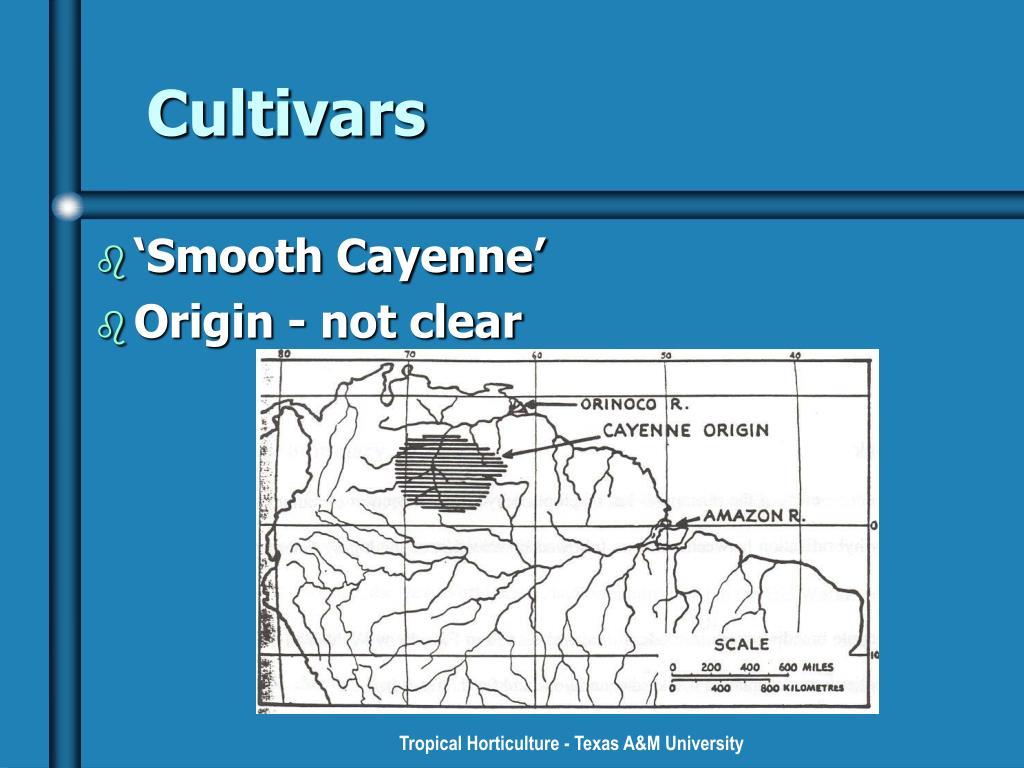 Cultivars