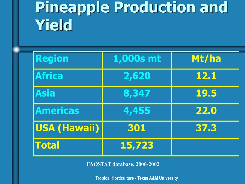 Pineapple Production and Yield