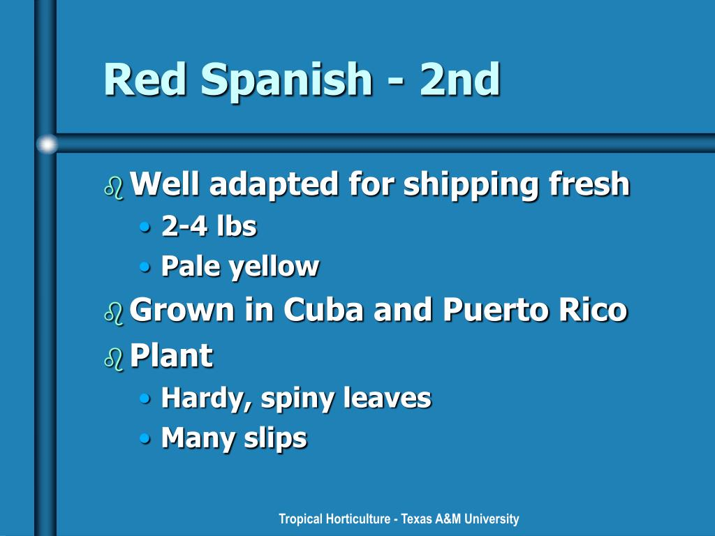 Red Spanish - 2nd