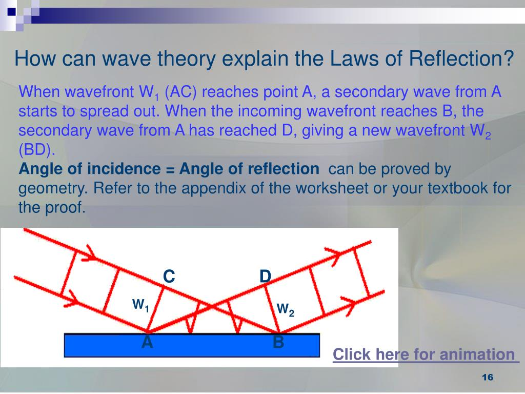How can wave theory explain the Laws of Reflection?