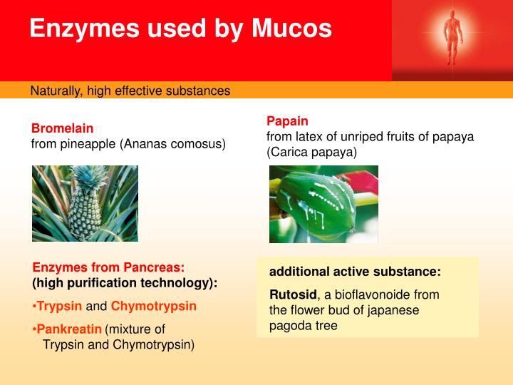Enzymes used by Mucos