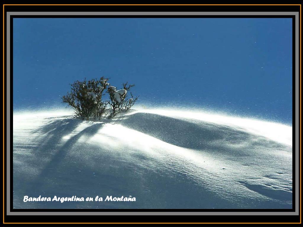 Bandera Argentina en la Montaña