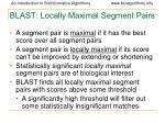 blast locally maximal segment pairs
