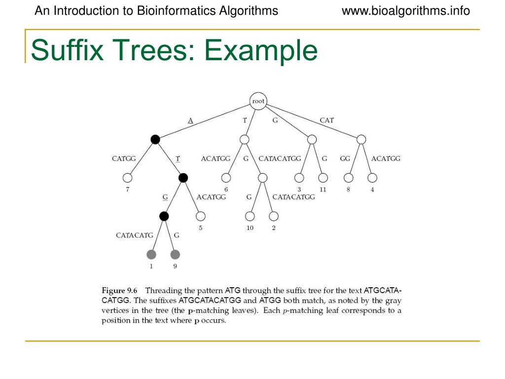 Suffix Trees: Example