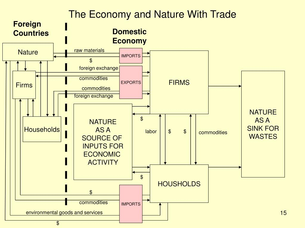 The Economy and Nature With Trade