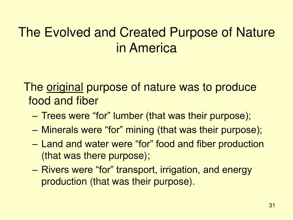 The Evolved and Created Purpose of Nature in America