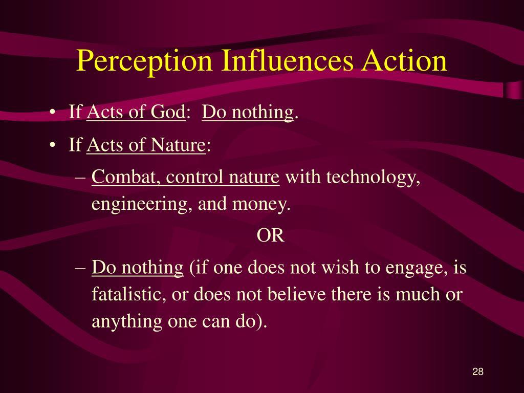 Perception Influences Action