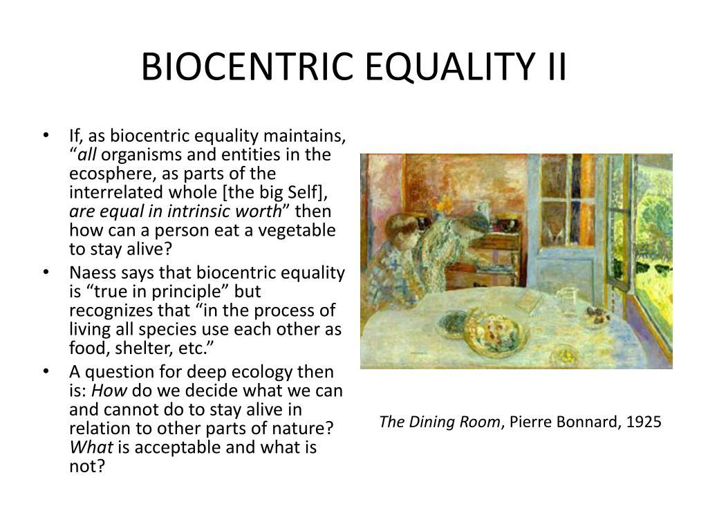 BIOCENTRIC EQUALITY II