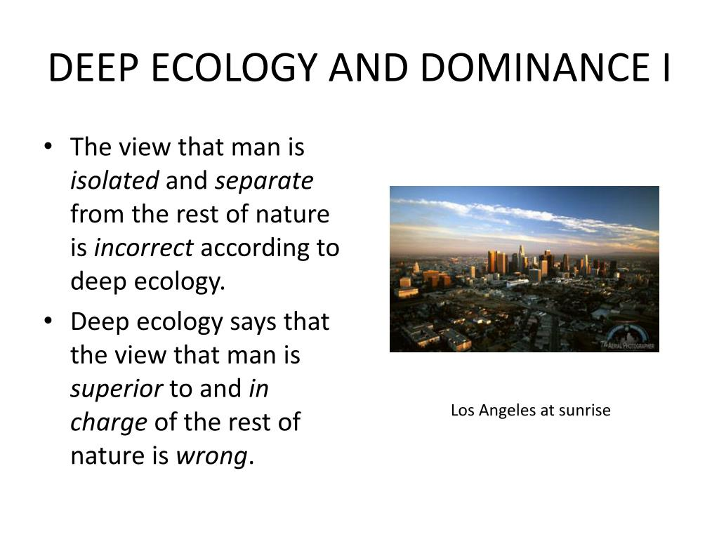 DEEP ECOLOGY AND DOMINANCE I