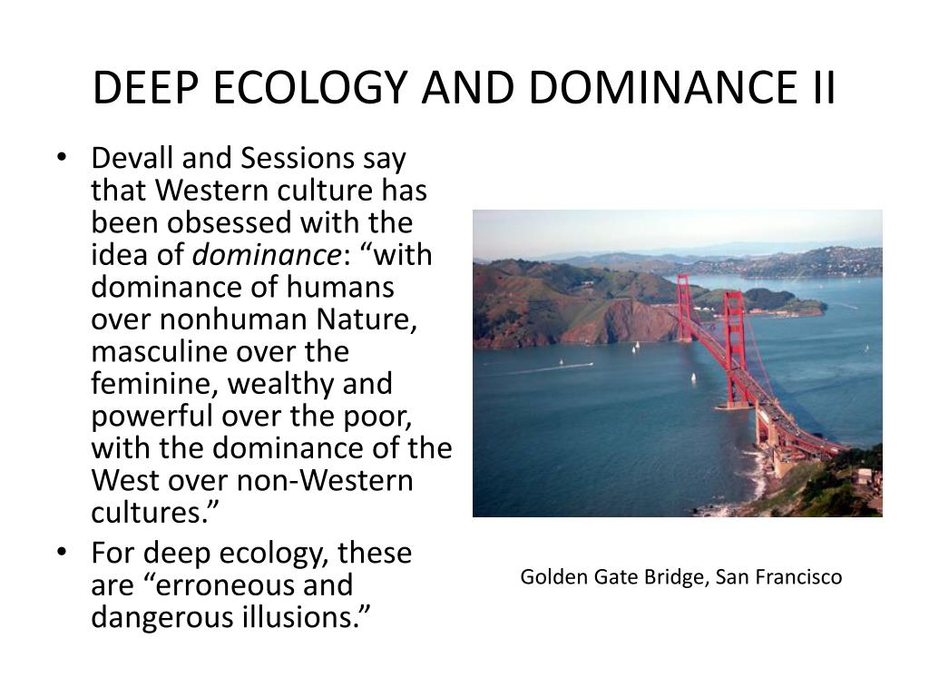 DEEP ECOLOGY AND DOMINANCE II