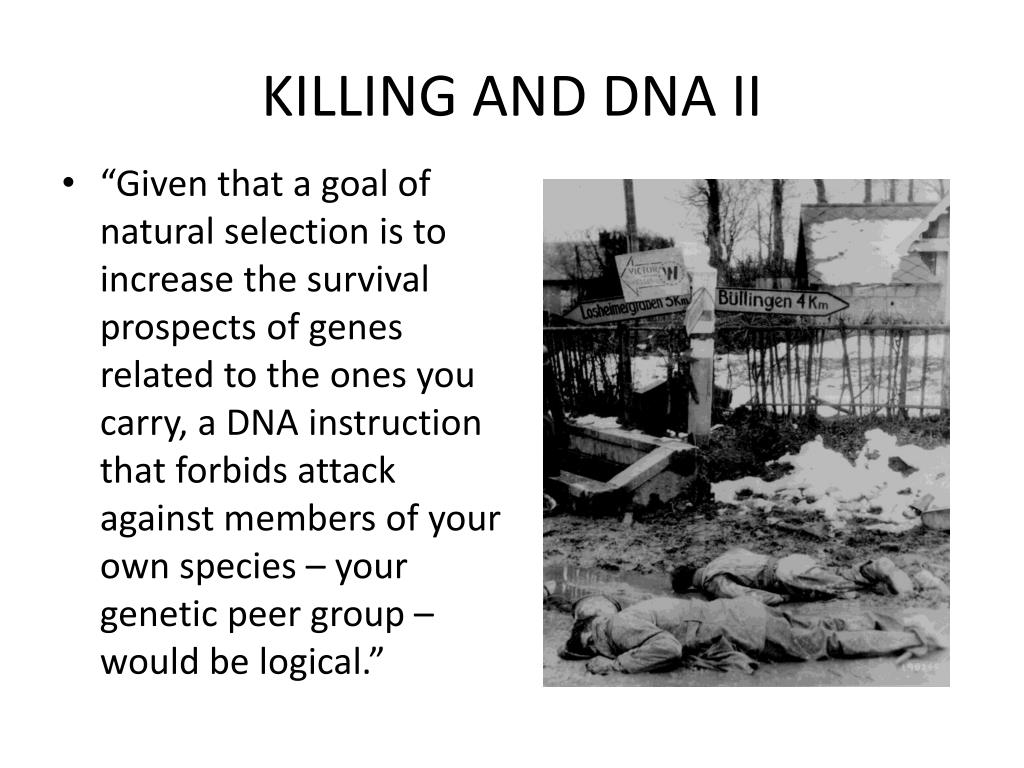 KILLING AND DNA II