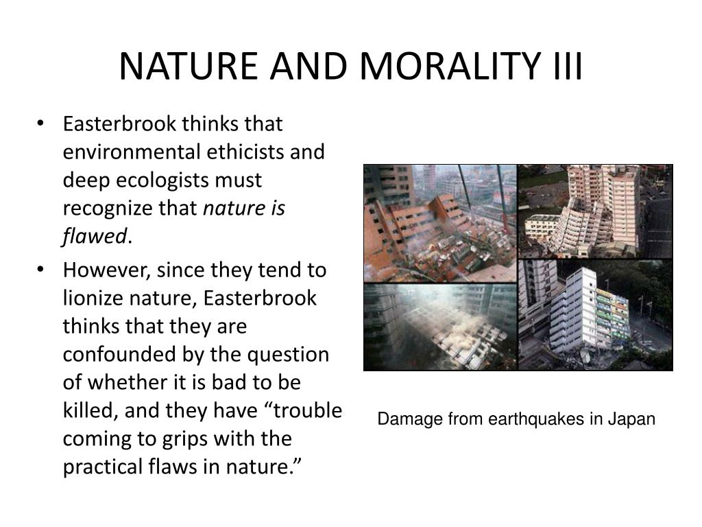 NATURE AND MORALITY III