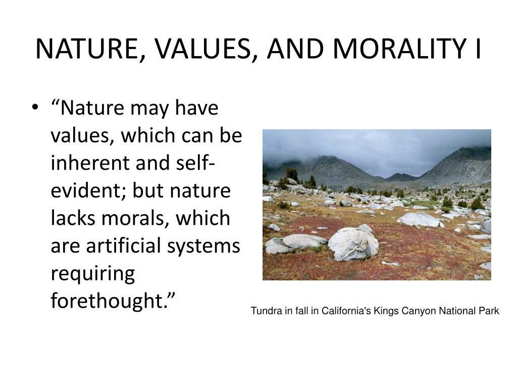 NATURE, VALUES, AND MORALITY I