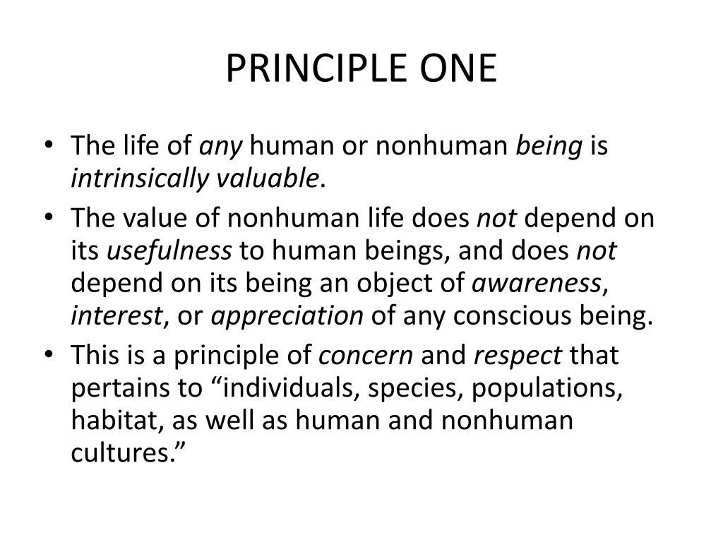 PRINCIPLE ONE