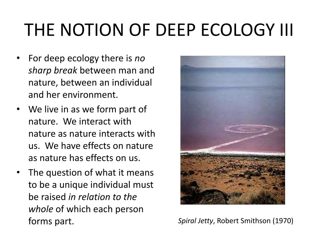 THE NOTION OF DEEP ECOLOGY III