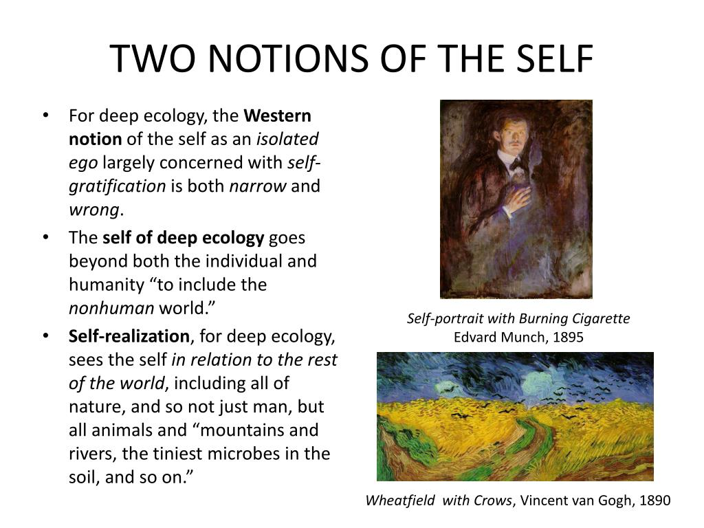 TWO NOTIONS OF THE SELF