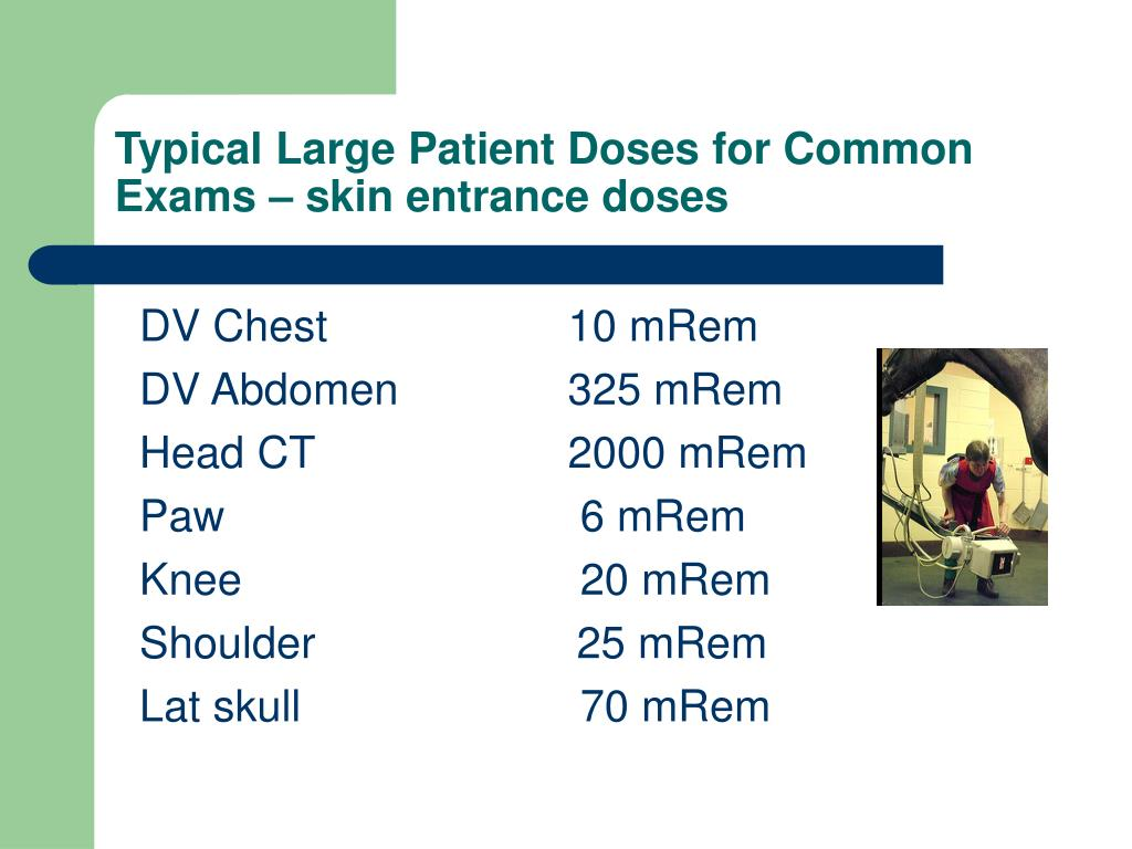 Typical Large Patient Doses for Common Exams – skin entrance doses