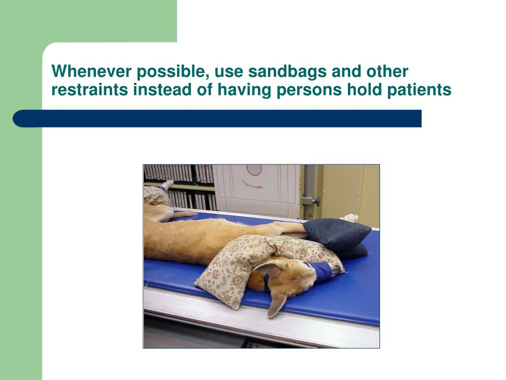 Whenever possible, use sandbags and other