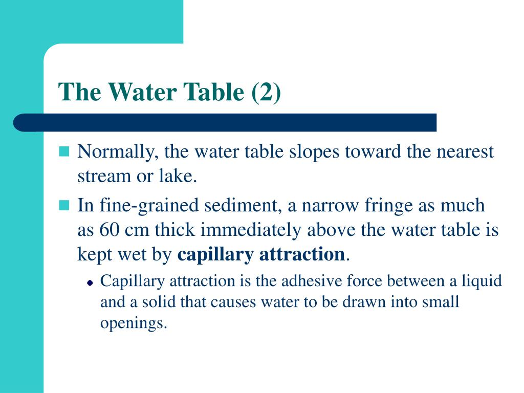 The Water Table (2)
