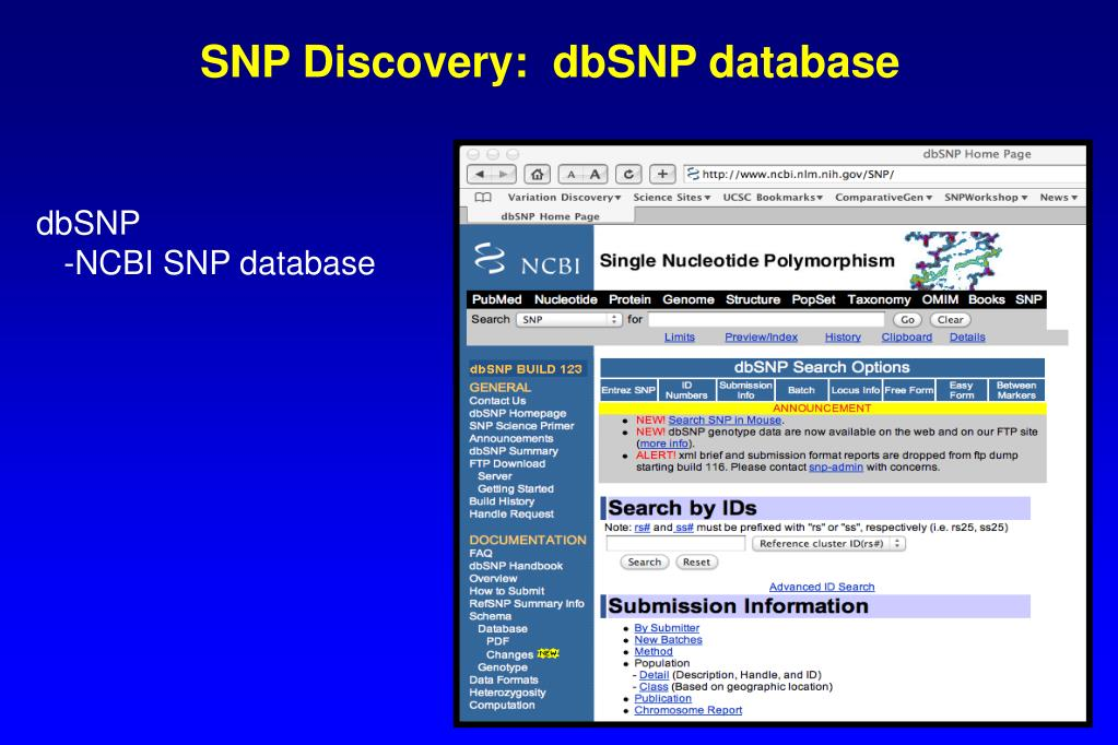SNP Discovery:  dbSNP database