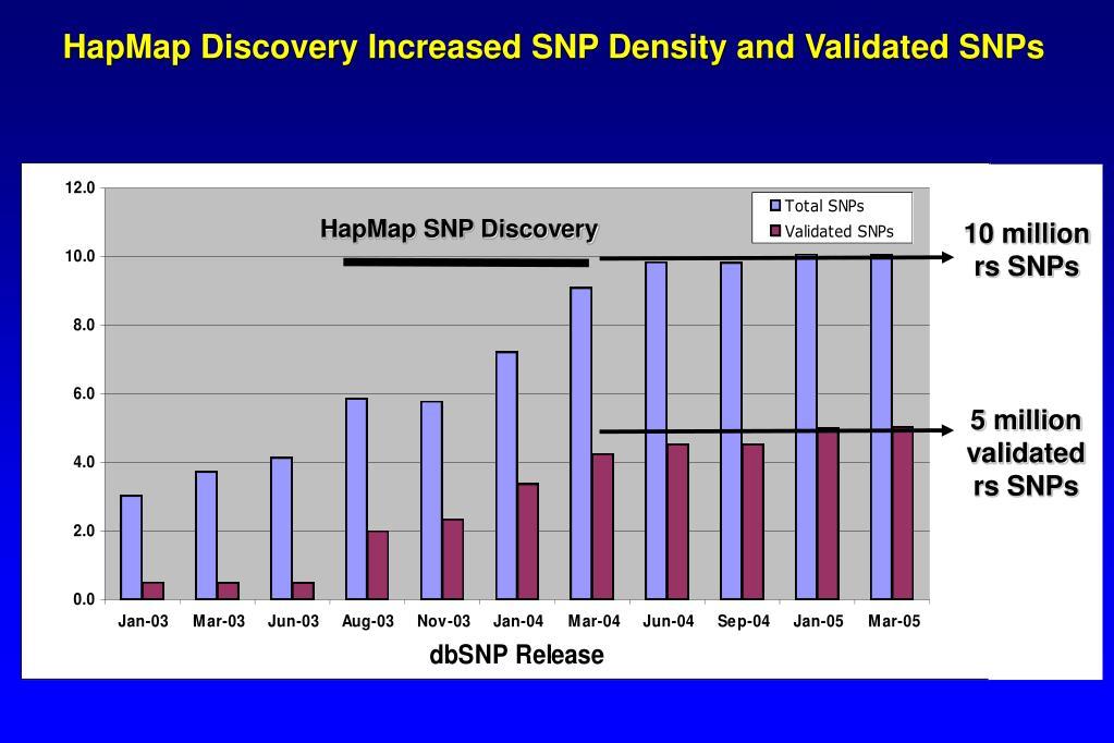 HapMap SNP Discovery
