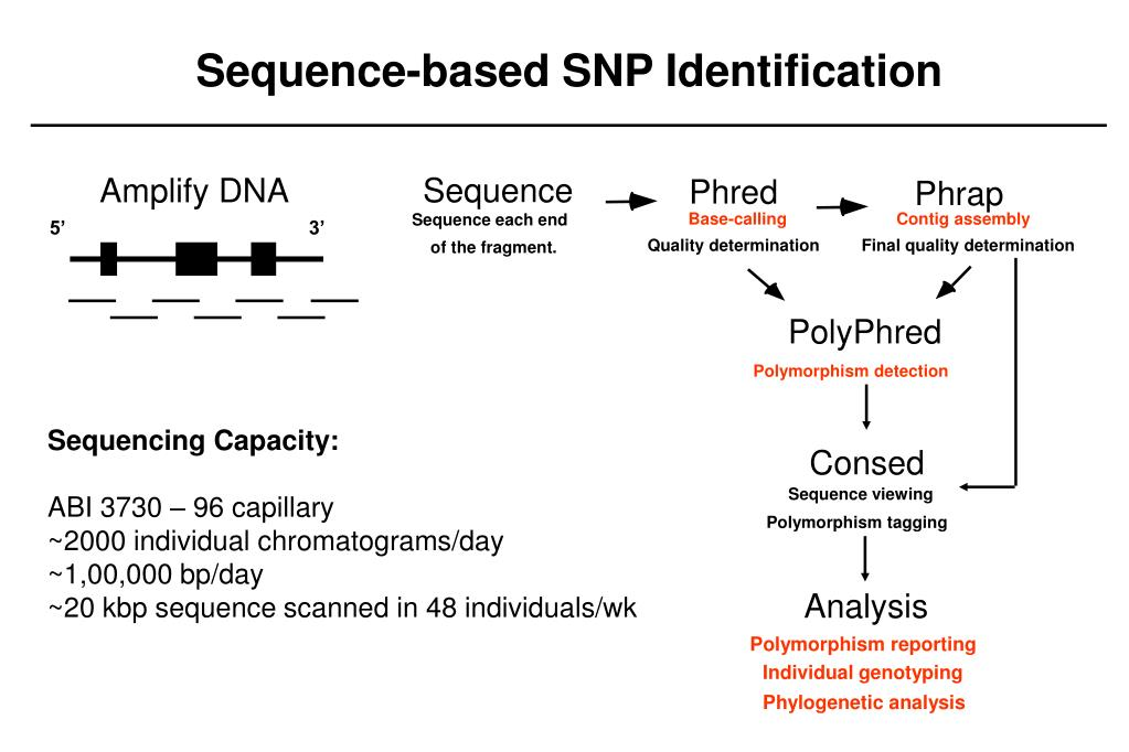 Sequence-based SNP Identification