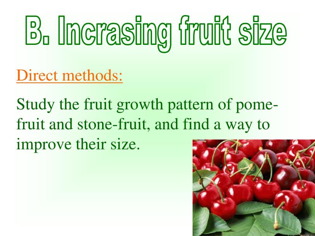 B. Incrasing fruit size