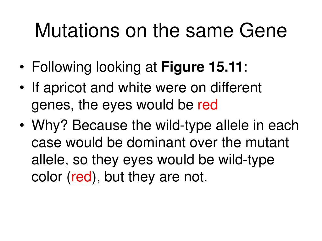 Mutations on the same Gene