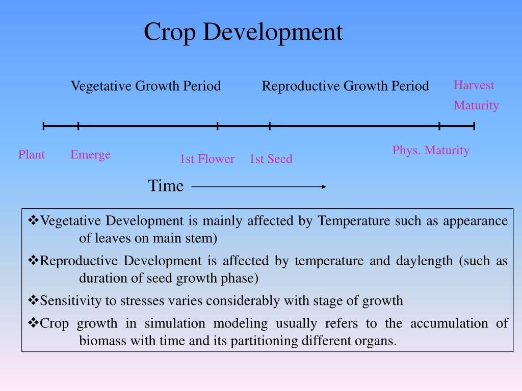 Crop Development