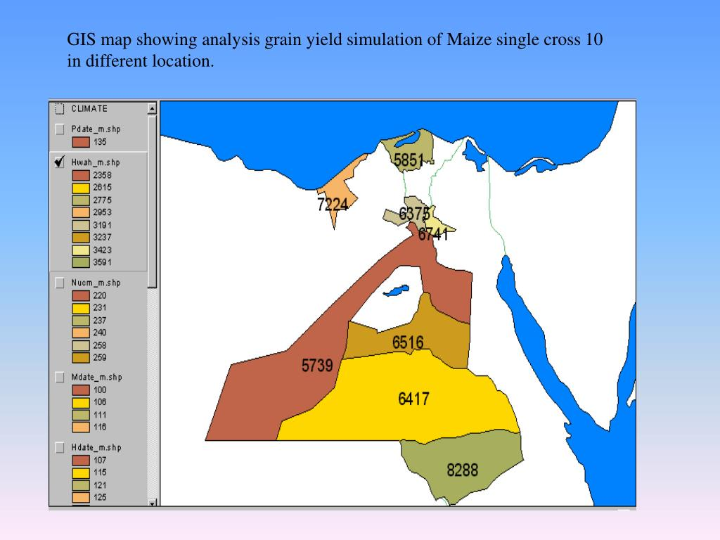 GIS map showing analysis grain yield simulation of Maize single cross 10 in different location.